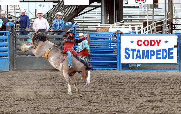 A day at the rodeo. Cody, Wyoming. Bare bronc rider in for a wild ride!