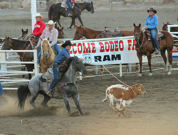 A night at the rodeo.  Cody, Wyoming This calf doesn't know it yet but this cowgirl has just proved the ladies can rope too!