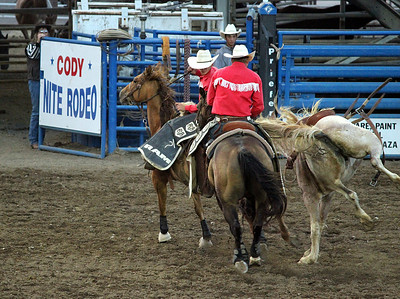 A night at the rodeo. Cody, Wyoming. A saddle bronc being difficult.
