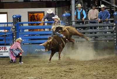 A night at the rodeo. Cody, Wyoming. Bullrider in action.